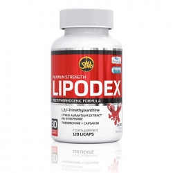 ALL STARS Lipodex 120 capsules