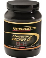 PERFORMANCE BCAA-G 500 g