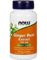 NOW FOODS Ginger Root Extract 250mg 90 vcaps.