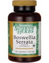 SWANSON Boswellia Serrata Extract 120 kaps.