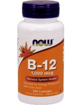 NOW FOODS B-12 + Kwas Foliowy 1000mcg 250 lozenges