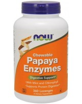 NOW FOODS Papaya Enzymes Chewable 360 tab.do ssania