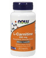 NOW FOODS L-Carnitine 250mg 60 kaps.