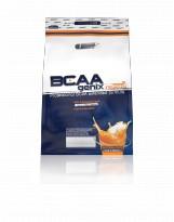 BIOGENIX BCAA Genix 500 g