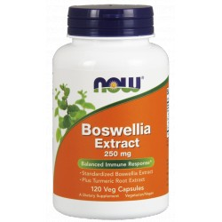 NOW Foods Boswellia Extract 250 mg 120 weg.kaps.