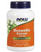 NOW Foods Boswellia Extract 250 mg 120 weg.kaps.