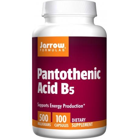 JARROW Kwas pantotenowy B5 500 mg 100 kaps.