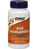NOW FOODS Acidophilus 4X6 120 weg.kaps.