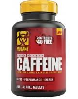 PVL Caffeine Core 240 tabl.