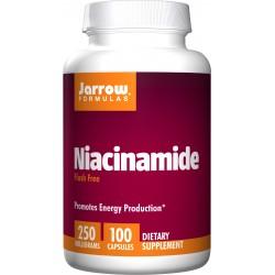 JARROW FORMULA Niacinamide 250 mg (Flush Free) 100 kaps.