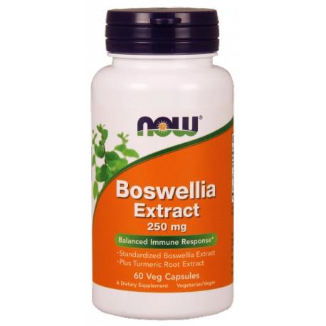 NOW Foods Boswellia Extract 250 mg 60 weg.kaps.
