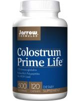 JARROW FORMULAS Colostrum Prime Life 500mg 120 kaps.