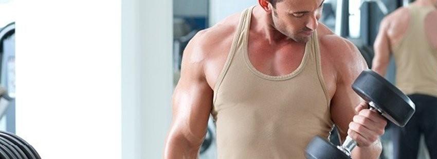 Testosteron i ZMA